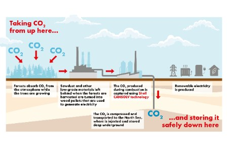 Shell technology evaluated for carbon dioxide capture project