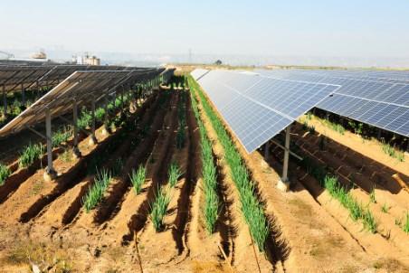R.POWER to expand into Italian solar market